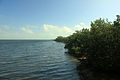 Gfp-florida-biscayne-national-park-biscayne-shoreline.jpg