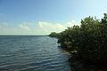 Gfp-florida-biscayne-national-park-biscayne-shoreline.jpg