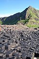 Giant's Causeway - geograph.org.uk - 626641.jpg