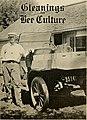 Gleanings in bee culture (1916) (14590419558).jpg