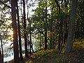 Gmina Piecki, Poland - panoramio (194).jpg