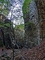 Gorge du Loup (Echternach) 03.jpg