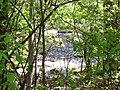 Grants Creek, Allan Mills, Tay Valley Township (2276851440).jpg