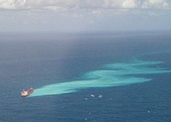 Great barrier oil spill march 2010 (cropped).jpg