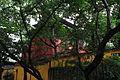 Guangzhou Wuxian Guan 2012.11.15 15-43-05.jpg