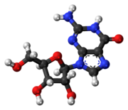 Ball-and-stick model of the guanosine molecule
