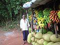 Gudalur, Nilgiris, Tamil Nadu, India. (4650485547).jpg
