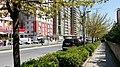 Hürriyet Caddesi Esenyurt - Beylikdüzü Bölgesi - panoramio (3).jpg