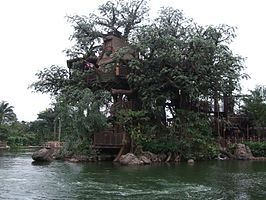 Tarzan's Treehouse in Hong Kong Disneyland