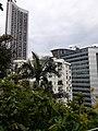 HK ML 半山區 Mid-levels 波老道 Borrett Road February 2020 SS2 28.jpg
