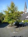Haan Denkmalbereich 3 (Gruiten-Dorf) 001 66.JPG