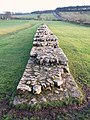 Hadrian's Wall at Black Carts - geograph.org.uk - 1129315.jpg