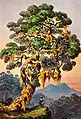 Haeckel 05.jpg
