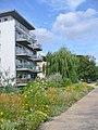 Hakenfelde - Haveluferweg (Havel Riverside Path) - geo.hlipp.de - 40445.jpg