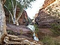 Hammersley Gorge, Western Australia (6924535064).jpg