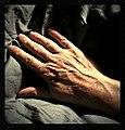 Hand - Flickr - Stiller Beobachter (1).jpg