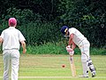 Hatfield Heath CC v. Takeley CC on Hatfield Heath village green, Essex, England 02.jpg