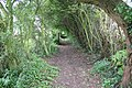 Hawthorn tunnel - geograph.org.uk - 531664.jpg