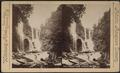 Hayne's Falls, Catskill Mts., N.Y, by Webster & Albee.png