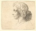 Head of young man with long hair in profile to the left MET DP823700.jpg