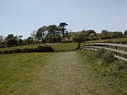 Heligan Meadow