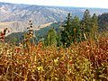 Hells Canyon September 2010.jpg