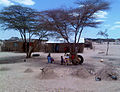 Helping families cope with future food disasters in Kenya (8046799944).jpg