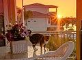 Hernando Beach, Florida - panoramio (7).jpg