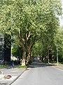 Herne Allee Landgrafenstraße.jpg