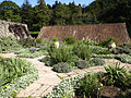 Hestercombe Dutch Garden3.jpg