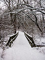 Hickory hill park bridge.jpg