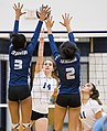 High school volleyball 6972 (37595600622).jpg