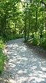 Hincaster Trail - panoramio (1).jpg
