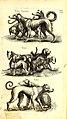 Historiae naturalis de quadrupetibus libri - cum aeneis figuris; (Historiae naturalis de serpentibus libri II; Historiae naturalis de insectis libri III; Historiae naturalis de exanguibus aquaticis (14750889212).jpg