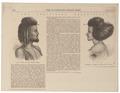 Homo sapiens - Afar, Ethiopië - 1868 - Print - Iconographia Zoologica - Special Collections University of Amsterdam - UBA01 IZ19400181.tif