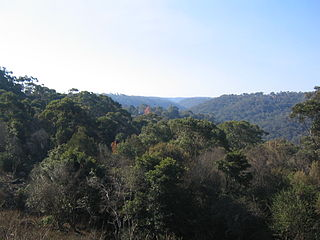 Hornsby Heights, New South Wales Suburb of Sydney, New South Wales, Australia