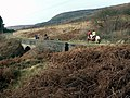 Horse riders on Rhodeswood Reservoir bridleway path - geograph.org.uk - 663470.jpg