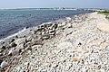 Horseneck Beach State Reservation - Westport, MA - panoramio (40).jpg