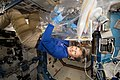 ISS-52 Peggy Whitson works in the Destiny lab.jpg
