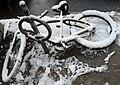 IT'S BACK....THE DREADED WHITE STUFF (3054316831).jpg