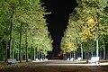 Illuminierte Parkbänke im Hofgarten Düsseldorf (cropped).jpg