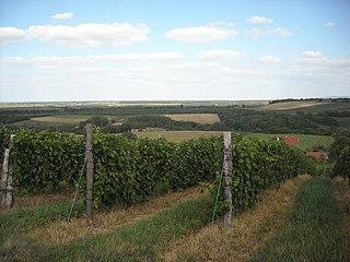 Vukovar-Syrmia County County in eastern Croatia