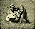 """Image from page 296 of """"Beasts and men, being Carl Hagenbeck's experiences for half a century among wild animals;"""" (1912).jpg"""