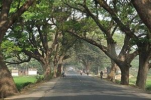 పశ్చిమ బెంగాల్ లో ఒక జాతీయ రహదారికి ఇరువైపులా ఉన్న వృక్షాలు. నేడు అభివృద్ధి పేరున రహదారులకిరువైపుల ఉన్న చెట్లను విచ్చలవిడిగా తొలగిస్తున్నారు.