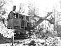 Industrial steam shovel at work in the woods, Big Creek Logging Company, Knappa, ca 1918 (KINSEY 2101).jpeg