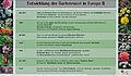Infoschild Entwicklung der Gartenrose in Europa II.jpg