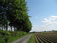 Ingooigem Countryside.jpg