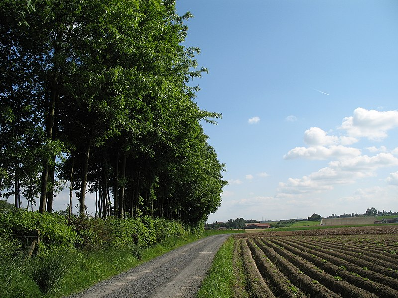 The countryside of the Ingooigem province of West Flanders, Belgium.  On the right are the slopes of Tiegemberg Hill.