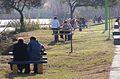 Invierno en el Parque Zorrilla 04.JPG