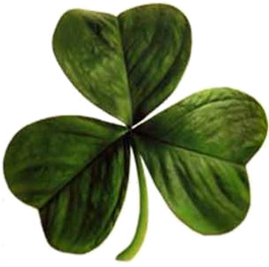 South Side Irish - Image: Irish clover